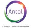 Locuri de munca la Antal International
