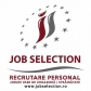 Logo Job Selection, Brasov