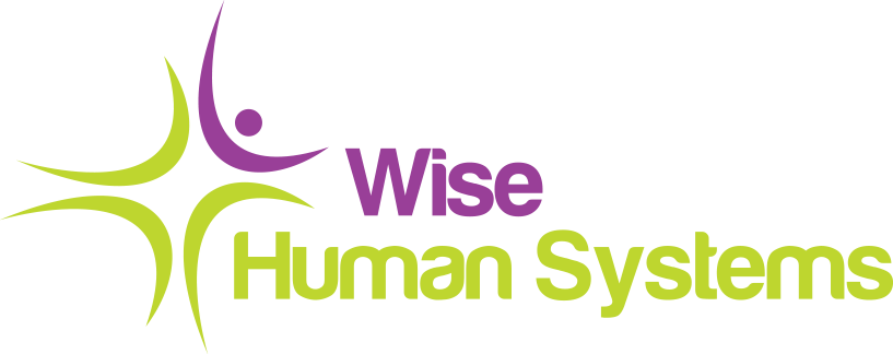 SC Wise Human Systems SRL